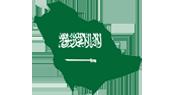 Suudi Arabistan Elsa Fırça